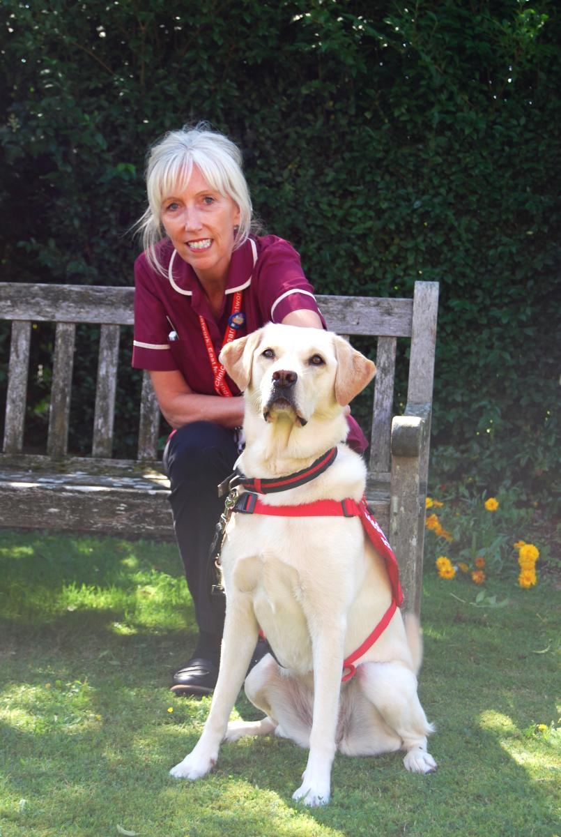 Covid Dogs 9 Research Nurse Joanne Walsh and Lexi 2